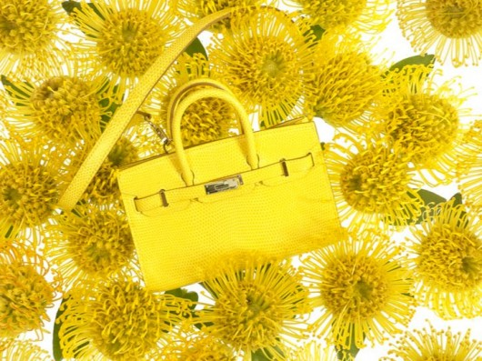 Hermès Tiny Birkin in Canary Lizard