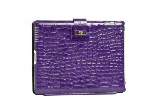 Dollargrand iPad case
