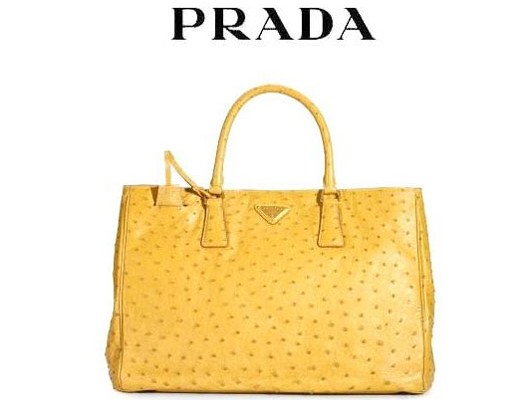 Веселенький страус от Prada